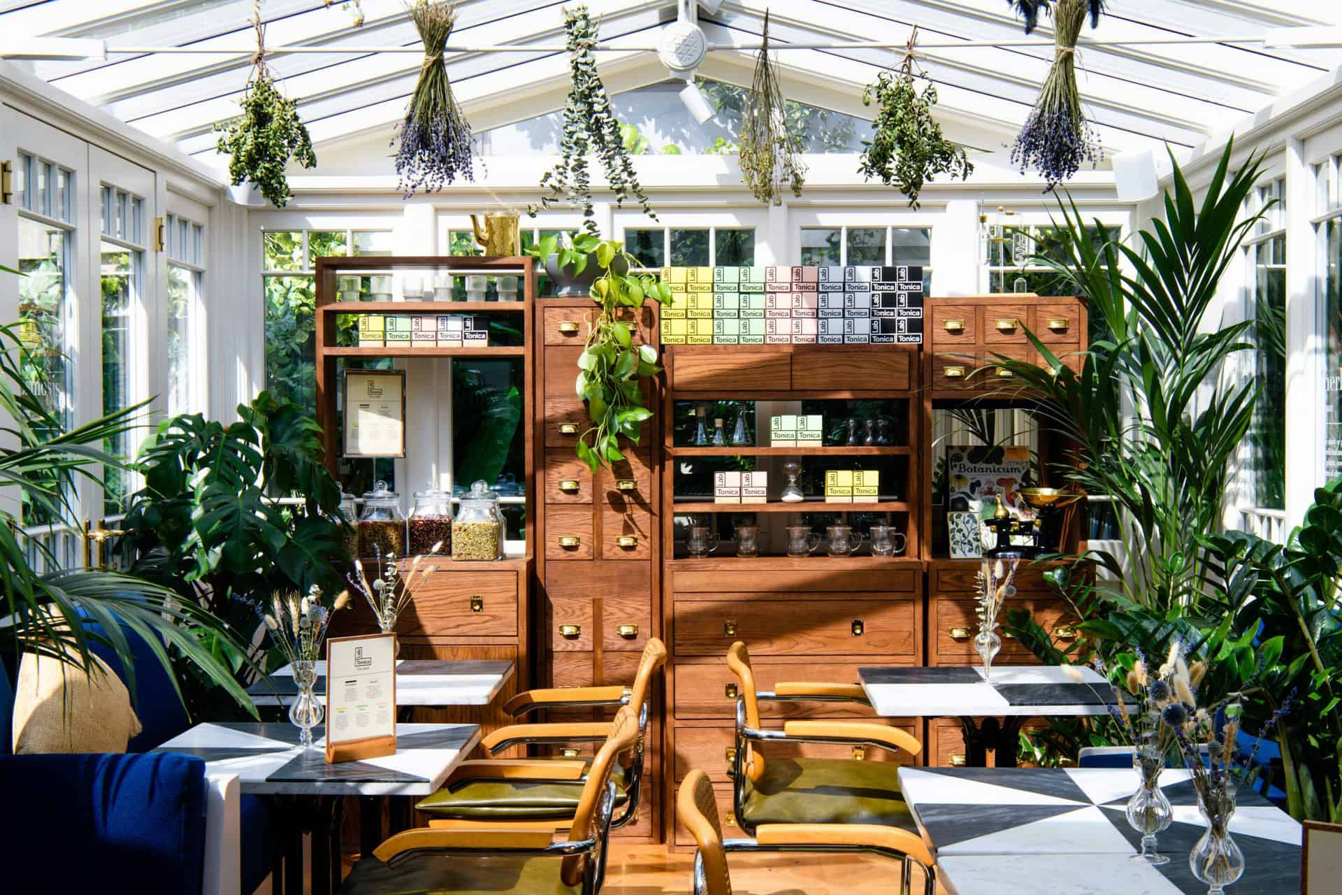 Apothecary style tea room in a glass conservatory with herbs hanging from the ceiling.